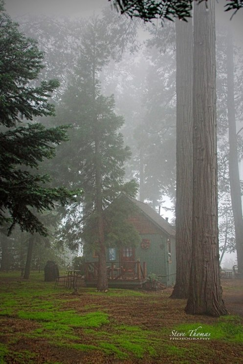 CABIN IN THE FOG