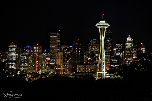 SEATTLE CITY LIGHTS SIG
