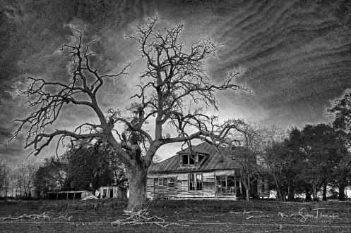 ABANDONED HOUSE - The Grove Texas - Dark Charcoal